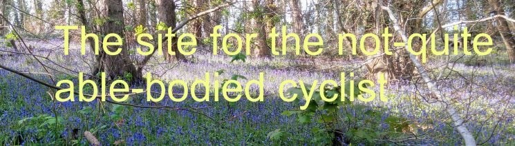 Bluebell Wood wide Banner Right.jpg